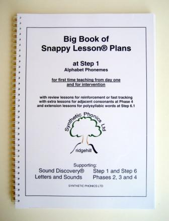 Big Book of Snappy Lesson Plans at Step 1.